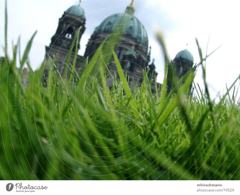 building behind blade of grass Grass Meadow Building Summer Green Architecture Sun Sky Tower