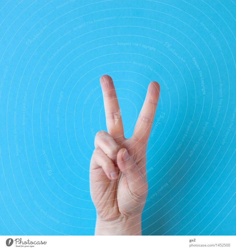 V Human being Adults Hand Fingers 1 Sign Communicate Success Positive Optimism Power Tolerant Peace Gesture Colour photo Interior shot Studio shot Close-up