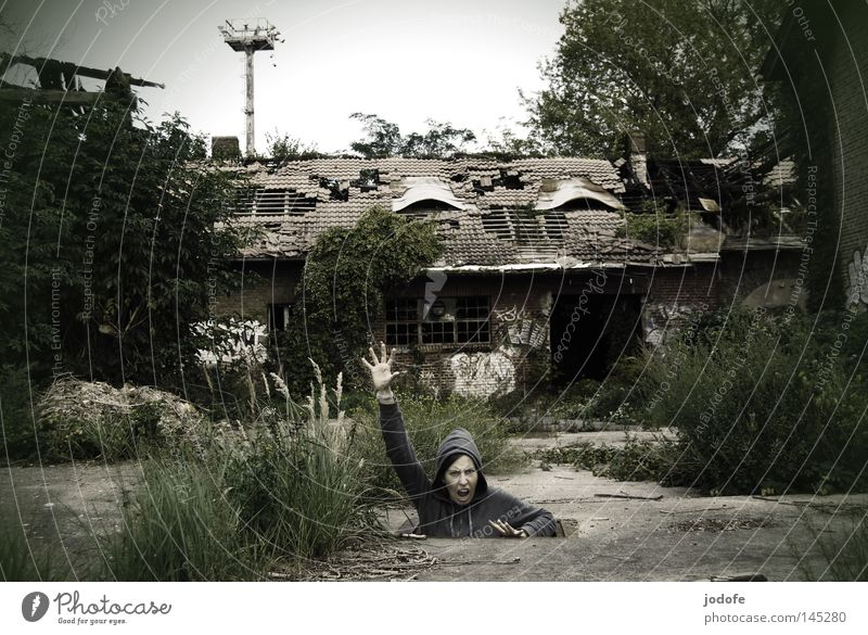 Human being Woman Nature Hand Plant Loneliness House (Residential Structure) To talk Grass Stone Building Lamp Concrete Fingers Growth Ground