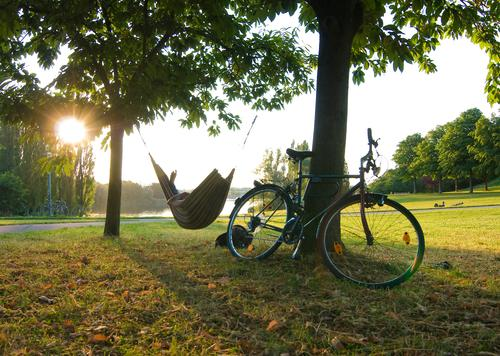 closing time Hammock Sun Sunbeam Bicycle Closing time Evening Free Freedom Leisure and hobbies Vacation & Travel Relaxation Stress Light Meadow Tree Break Joy