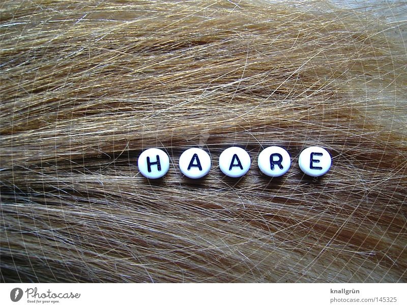 hair Word Letters (alphabet) Round Black White Brown Glimmer Hair and hairstyles Reflection Obscure Characters Pearl Dirty Blonde letter