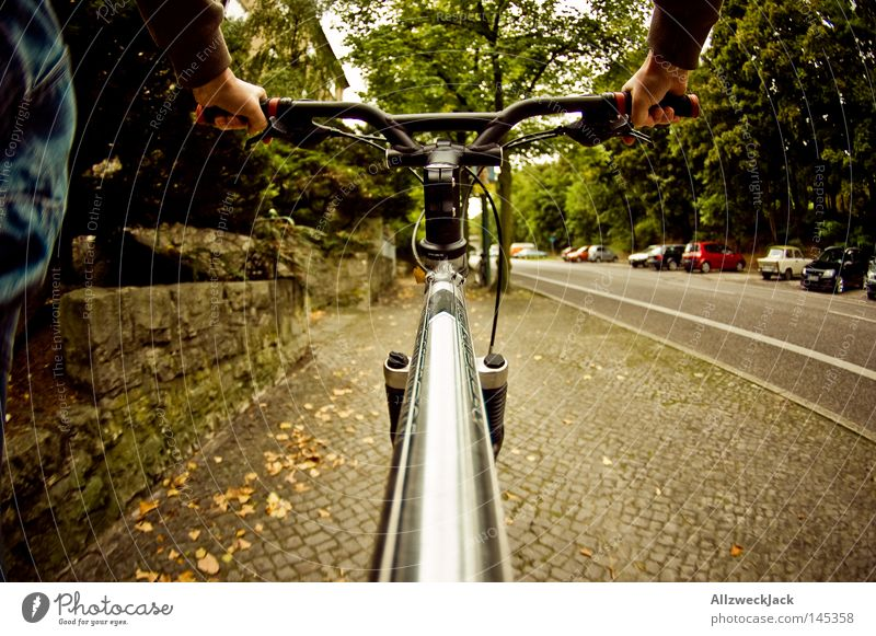 Vacation & Travel Street Movement Healthy Bicycle Trip Transport Driving Footpath Sidewalk Cycling tour Eco-friendly Kick about First person view