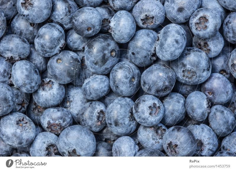 Nature Blue Colour Forest Autumn Natural Healthy Food Moody Fruit Fresh Esthetic Nutrition Sweet Fitness Kitchen