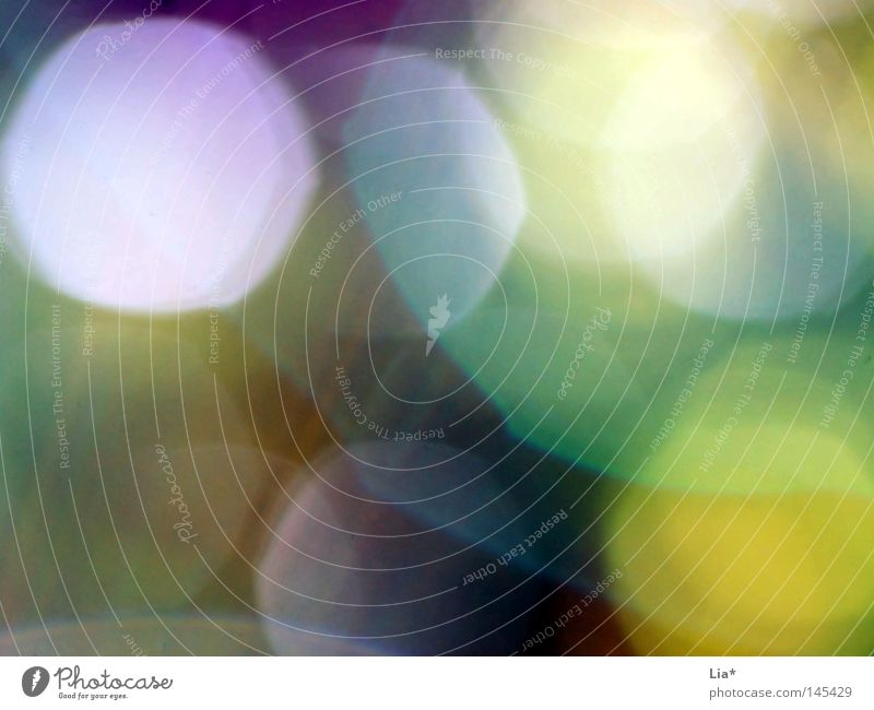 Summer Colour Autumn Dream Lighting Background picture Point Copy Space Patch Dazzle Lens Unclear Beam of light Lens flare Hazy RGB