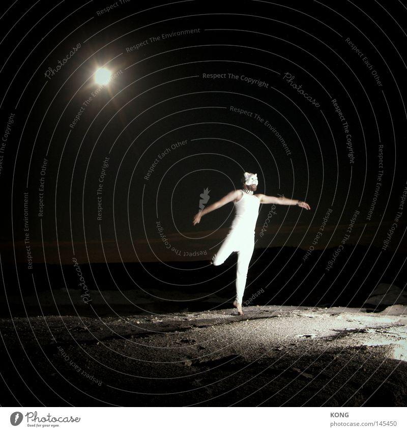 Beautiful Joy Lamp Jump Movement Music Cat Dance Stars Clothing Esthetic Mask Exceptional Dynamics Moon Easy