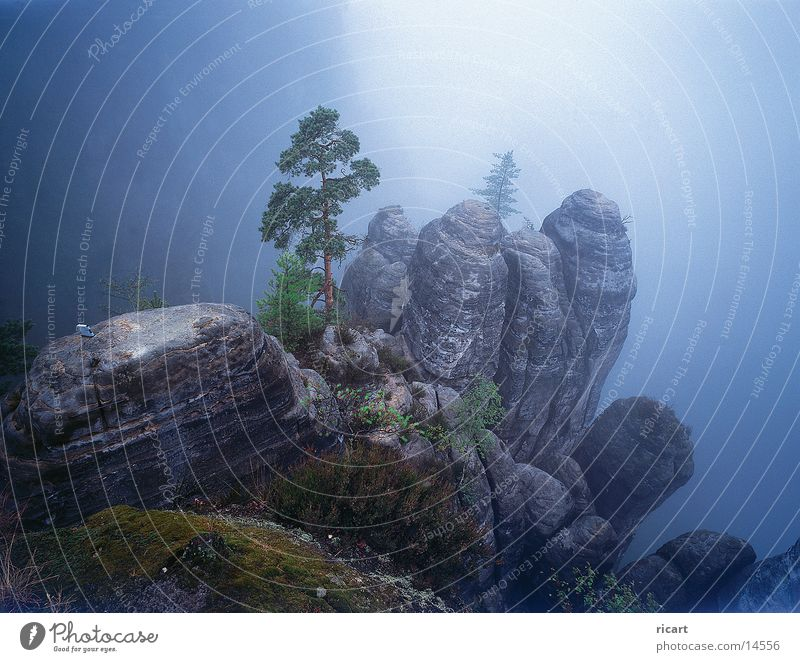 Mountain Fog Rock Impression Sandstone Elbsandstein region