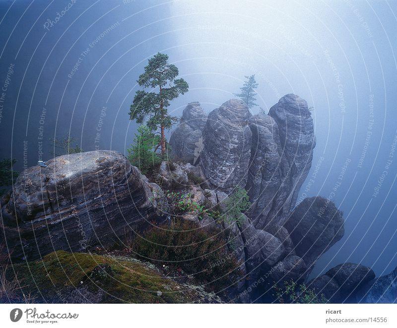 Mountain Fog Rock Impression Sandstone Elbsandstein region
