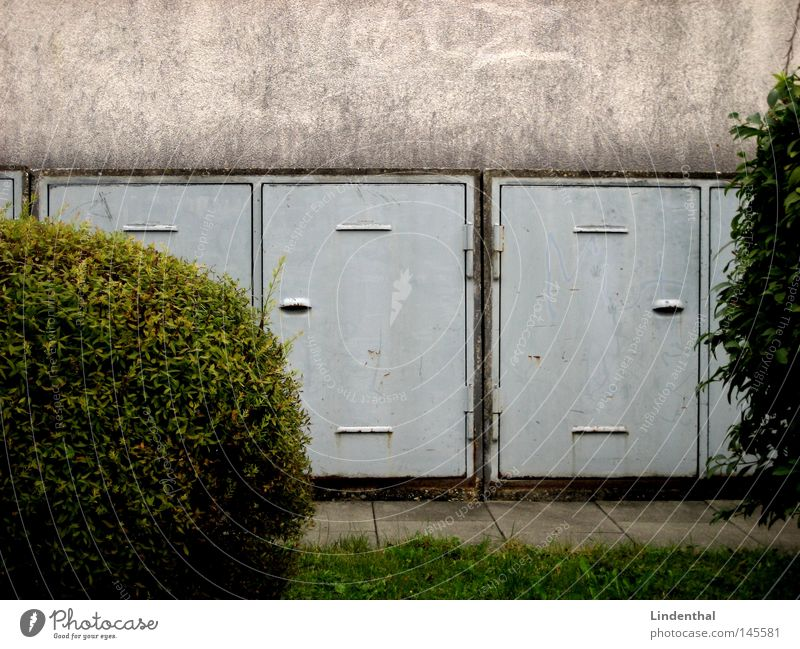 Meadow Wall (building) Gray Door Round Bushes Trash Sphere Obscure Attic Trash container Sharp-edged Keg Rack