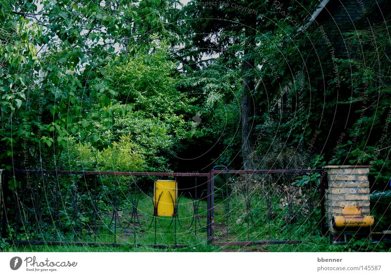 Nature Tree Green House (Residential Structure) Dark Wall (building) Grass Garden Building Bushes Mysterious Gate Derelict Decline Rust Shabby