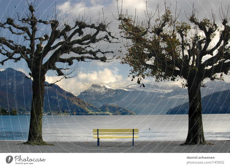 Water Sky Tree Blue Vacation & Travel Calm Leaf Clouds Loneliness Yellow Autumn Mountain Gray Lake Bench Vantage point