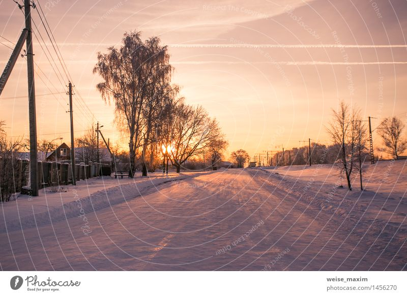 Train stop in a small town Sky White Tree Winter Forest Yellow Street Meadow Grass Snow Garden Pink Bushes Europe Railroad Frost
