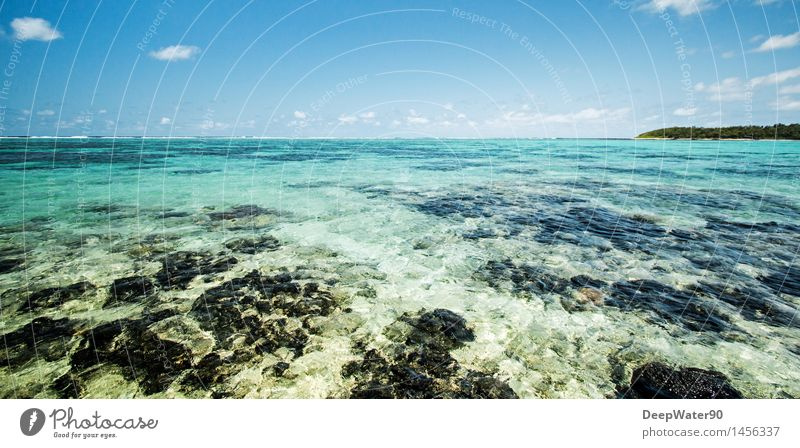 Sky Nature Vacation & Travel Plant Blue Colour Summer Water Sun Tree Ocean Clouds Far-off places Beach Environment Coast