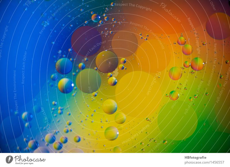 Coloured grease drops Style Design Exotic Meditation Art Work of art Round Crazy Multicoloured Idea Inspiration Creativity Dream Wellness Droplet of grease Damp
