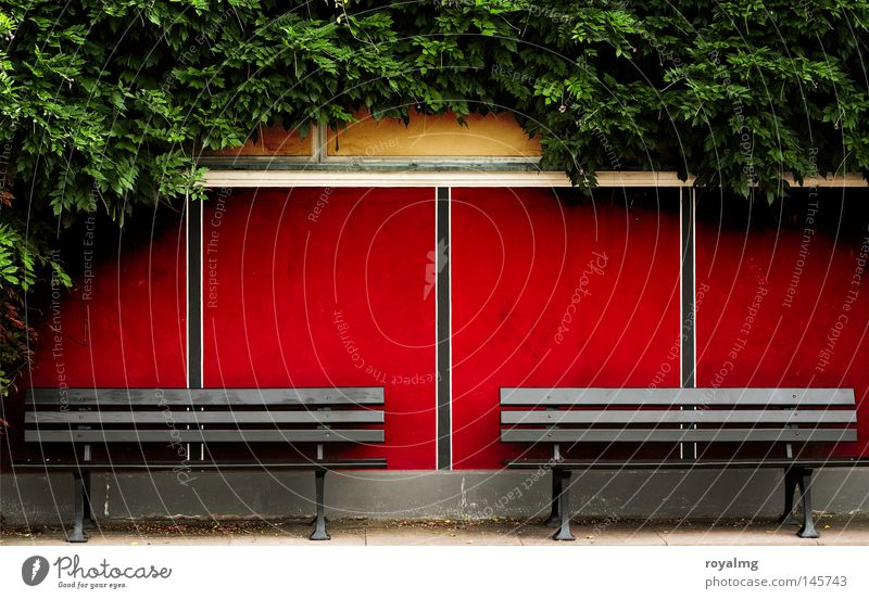 banking crisis Bench Seating Red Pattern Ivy Green Leaf Romance Stripe Frontal 2 Together Empty Loneliness Wooden bench Calm Peace Relaxation
