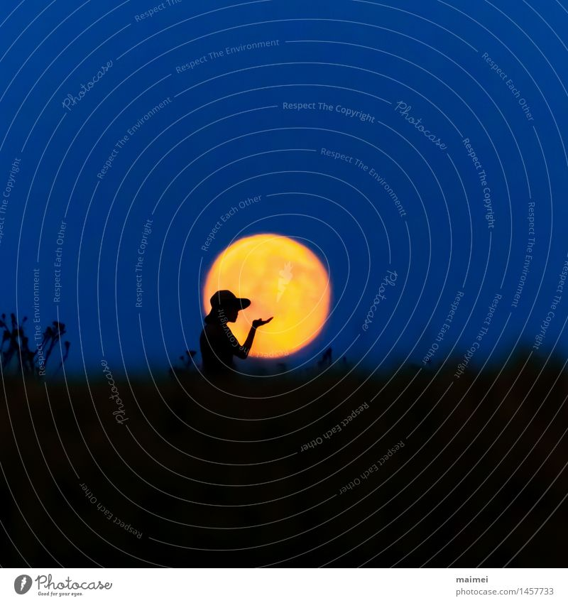 Harmony in the full moon Joy Happy Harmonious Woman Adults Arm Hand Nature Night sky Moon Full  moon Field Dress Hat Observe Contentment Loneliness Freedom