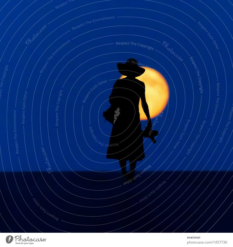 Barefoot through the night Harmonious Well-being Hiking Woman Adults 1 Human being Nature Moon Full  moon Street Dress Hat Going Brave Loneliness Adventure