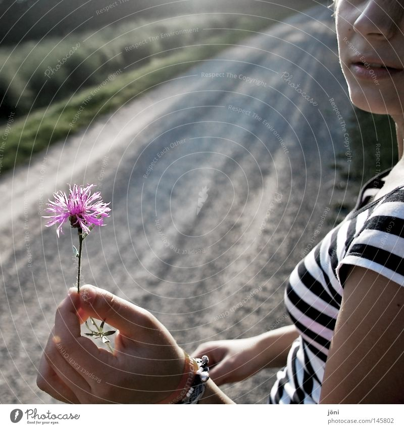 The little things in life Far-off places Infinity Deep Resume Stony Heavy Field Badlands Loneliness Slowly Sharp-edged Corner Romance Gift Watchfulness Gesture