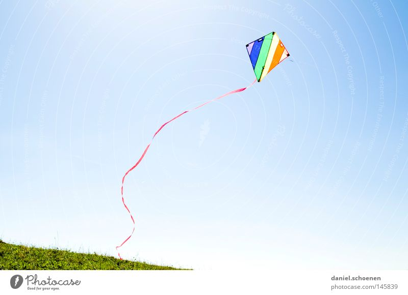 wind Wind Kite Kiting Colour Multicoloured Summer Autumn Sun Flying Sunbeam Weather Light Sky Blue Yellow Green Orange Red Violet Beautiful Leisure and hobbies