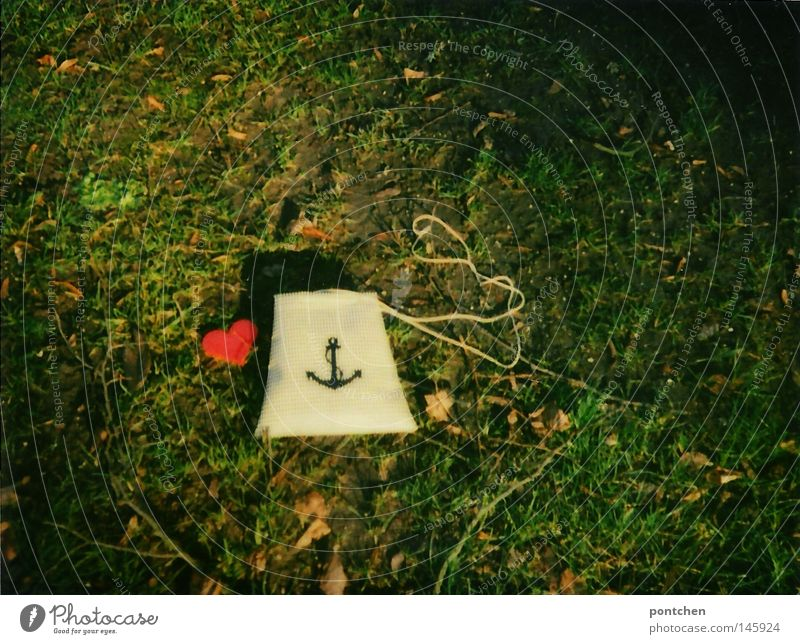 Nature Green Winter Leaf Autumn Meadow Style Park Earth Heart Design Ground Romance Kitsch Symbols and metaphors Sign
