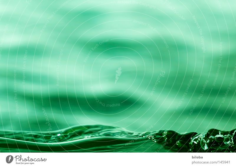 "Bil-Water II _ ""The Green Wave"" Waves Life Emotions Elements Chemical elements Lake Liquid Fluid Soft Delicate Calm Comforting Empty Air Primordial Deep Cold"