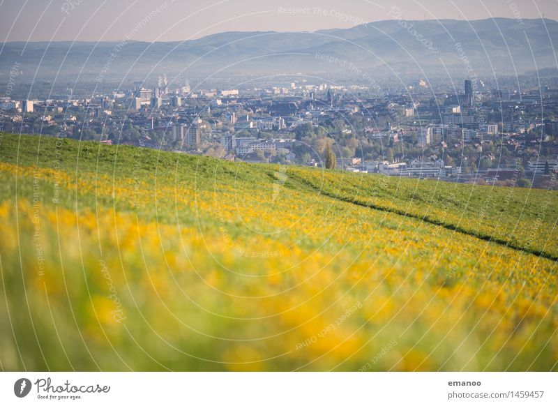 Spring in the City Vacation & Travel Tourism Freedom City trip Mountain Hiking Nature Landscape Weather Beautiful weather Flower Grass Hill Town Outskirts