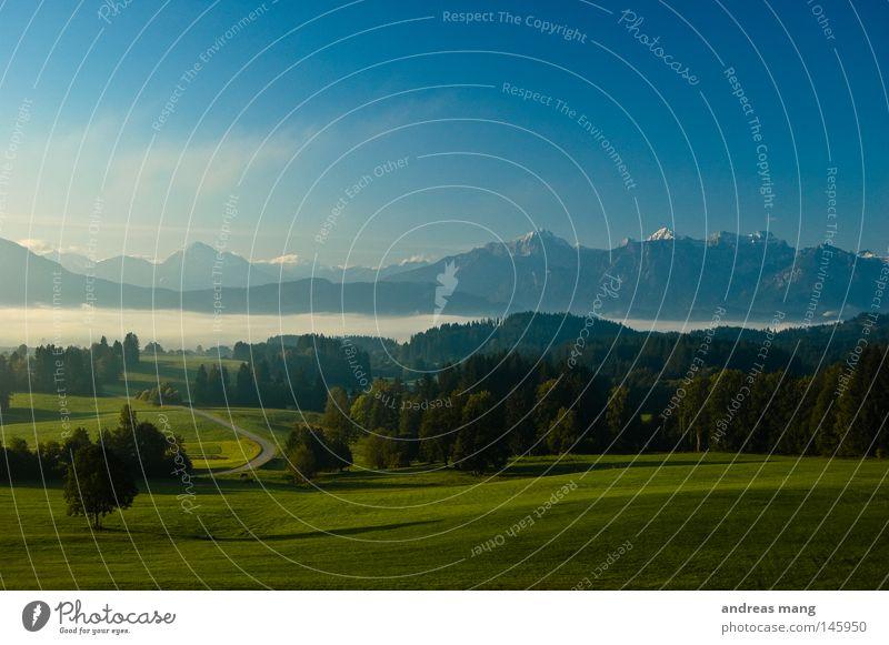 Bavaria Nature Sky Tree Street Forest Meadow Grass Mountain Fog Hill Valley Allgäu Mountain range Cloud cover
