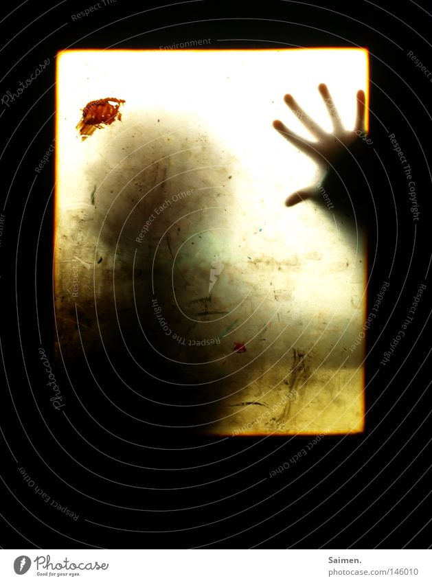Human being Hand Black Fear Dirty Fingers Dangerous Factory Threat Derelict Narrow Blood Patch Window pane Panic Slice