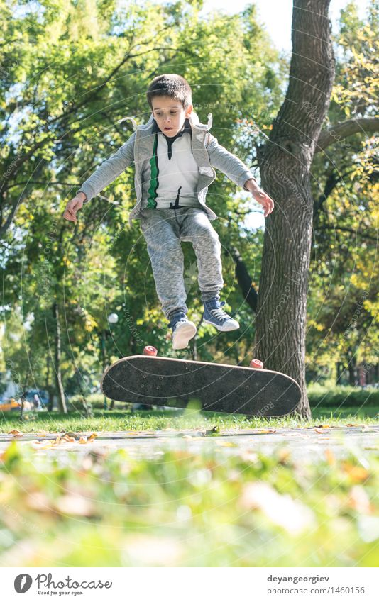 Boy with skateboard in the park Lifestyle Joy Relaxation Leisure and hobbies Summer Sports Child Human being Boy (child) Man Adults Autumn Leaf Park Street