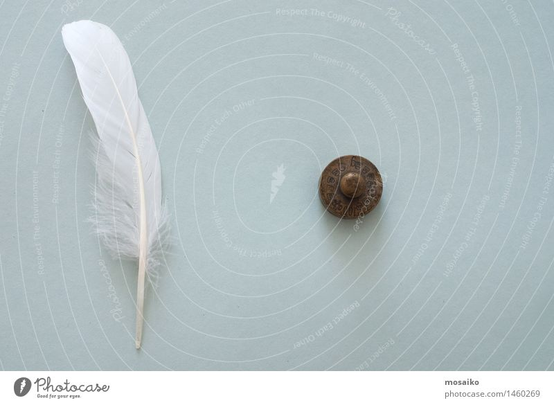 white feather and weight White Dark Gray Together Bright Contentment Copy Space Feather Paper Symbols and metaphors Stress Balance Surrealism Diet Competition