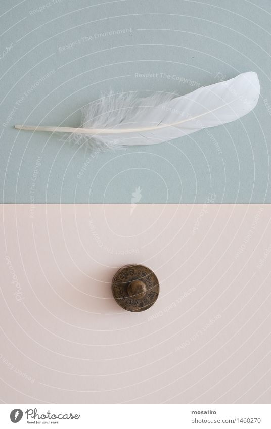 white feather and weight Paper Contentment Equal Creativity Break Surrealism Symmetry Above Feather Bird Blue Weight Weightlessness Diet Contrast White Heavy