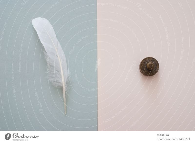 white feather and weight Paper Contentment Equal Surrealism Symmetry Heavy Equality Difference Symbols and metaphors Symbolism Feather White Contrast Tolerant