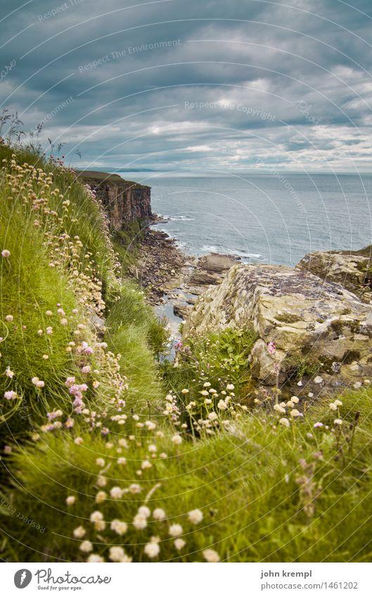 Nature Plant Landscape Flower Loneliness Coast Grass Tourism Rock Horizon Power Idyll Adventure Joie de vivre (Vitality) Friendliness Hill