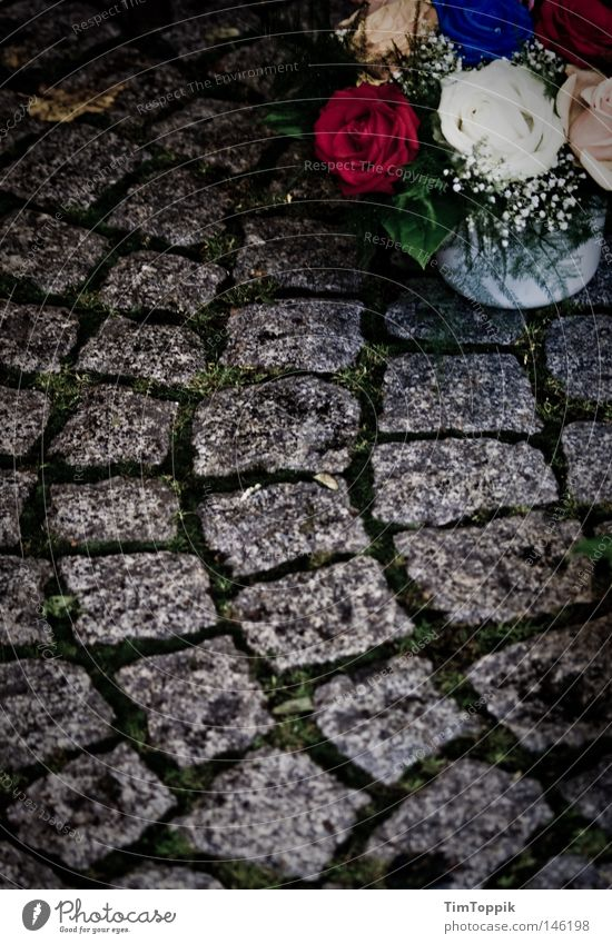 Flower Sadness Death Fear Transience Grief Fear of death Bouquet End Cobblestones Distress Cemetery Cry Lose Grave Funeral