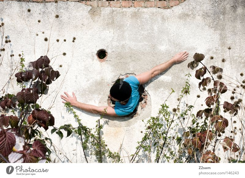 Human being Man Blue Plant Wall (building) Movement Wall (barrier) Arm Cap Rotate Hollow Trashy Whimsical Easygoing Bend