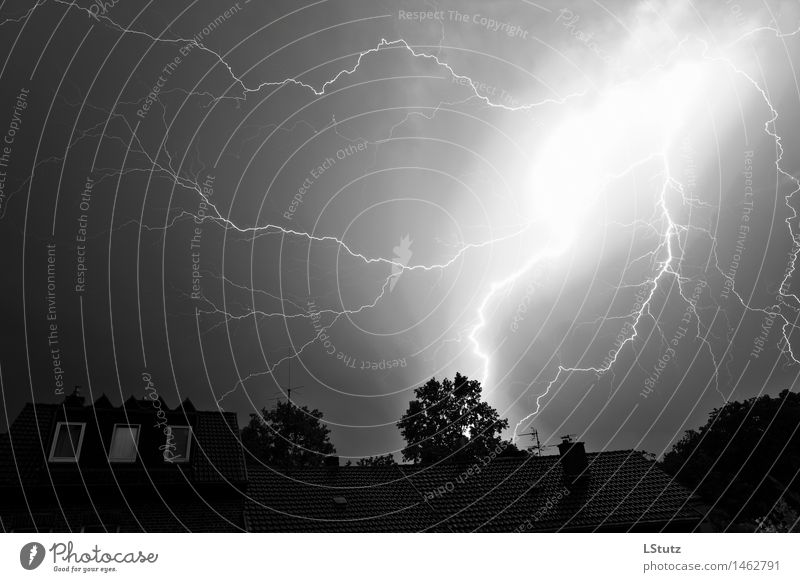 Sky Nature Summer White Dark Black Environment Bright Fear Weather Dangerous Climate Fear of death Storm Gale Lightning