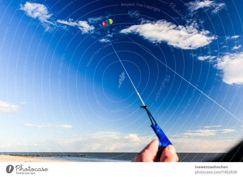 Sky Vacation & Travel Blue Beautiful Summer Sun Ocean Joy Movement Coast Sports Playing Freedom Flying Leisure and hobbies