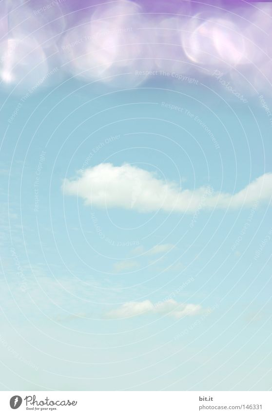 BIRD IN THE WATER, FISH IN THE SKY! Sky White Violet Glittering Light Dadaism Point of light Clouds Break Horizon Roof Background picture Abstract Pastel tone