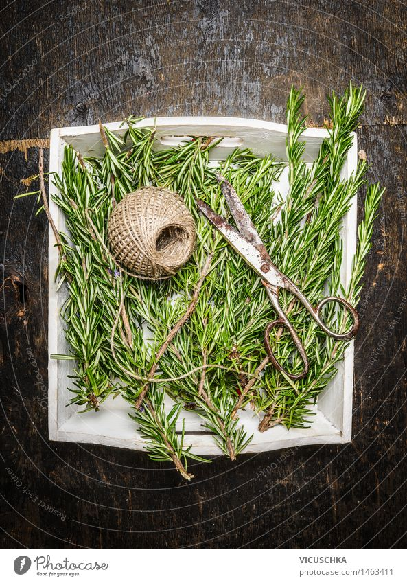 Rosemary and old scissors Food Herbs and spices Lifestyle Alternative medicine Healthy Eating Summer Garden Table Nature Design Style Aromatic Twig Scissors