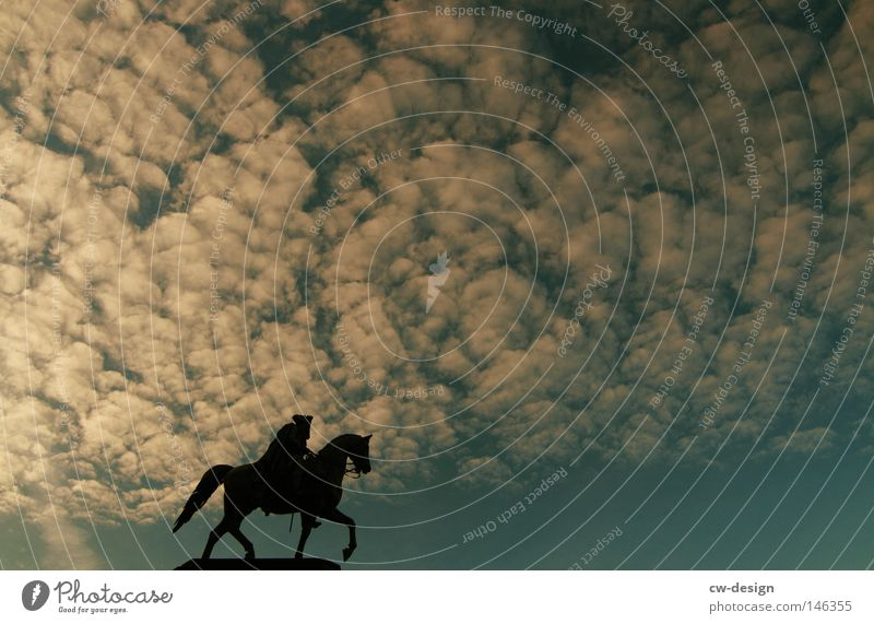 Human being Sky Man Blue Clouds Black Berlin Park Horizon Leisure and hobbies Concrete Horse Cleaning Historic Monument Statue