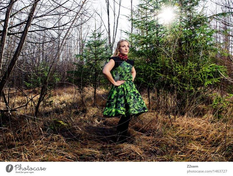 Nature Youth (Young adults) Christmas & Advent Beautiful Young woman Sun Tree Landscape 18 - 30 years Forest Adults Feminine Style Lifestyle Fashion Design