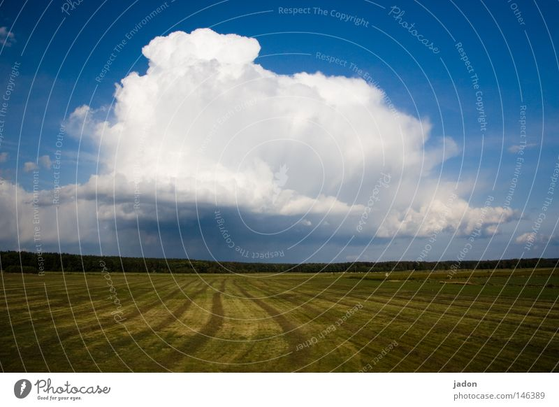 Clouds.field. Exterior shot Copy Space bottom Earth Sky Autumn Weather Storm Meadow Field Threat Blue Green White Might Energy industry Power Cloud cover