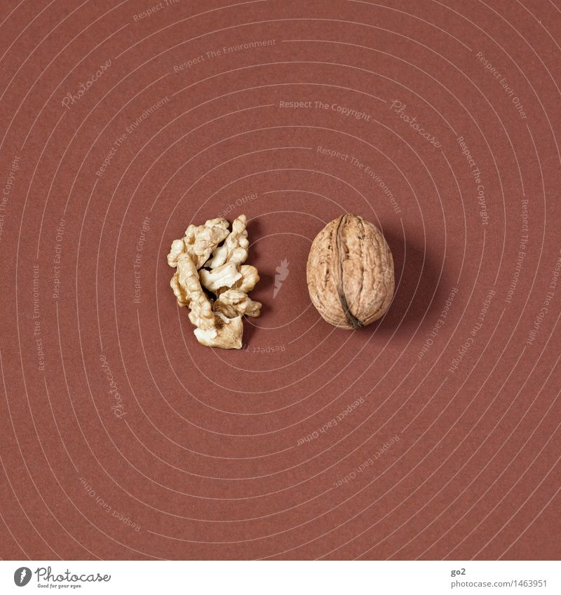 walnut Food Fruit Walnut Nut Nutrition Eating Organic produce Diet Healthy Eating Christmas & Advent Esthetic Simple Delicious Brown Colour photo Interior shot
