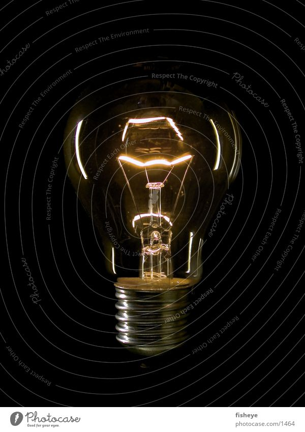 Light source/1 Electric bulb Electricity Dark Things Energy industry Glass Metal