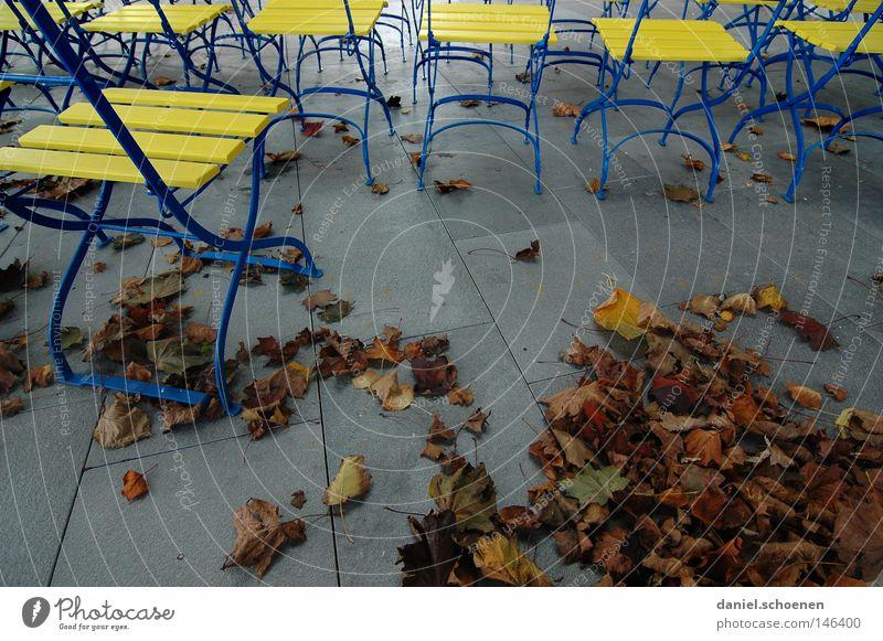 Leaf Yellow Colour Autumn Gray Park Moody Brown Break Chair