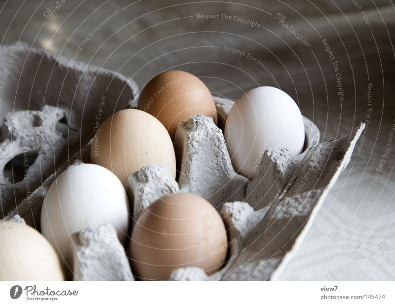 floor posture Barn fowl Packing material Laying hen Error Consumption Packaging Fried egg sunny-side up Scrambled eggs Poultry Livestock Farm Bowl Colour Dye