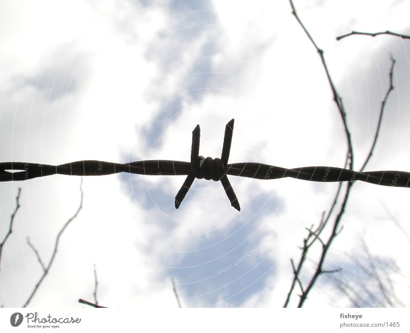 Blocked sky Barbed wire Fence Clouds Historic Point Sky Metal X