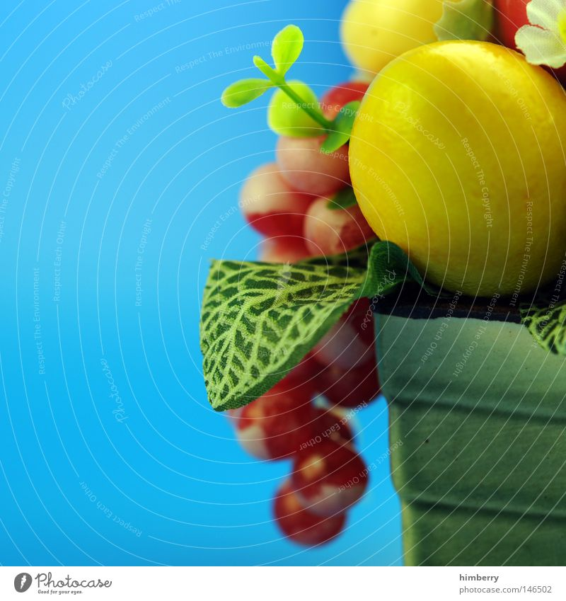 Style Art Design Modern Fruit Decoration Interior design Living or residing Kitsch Apple Multicoloured Things Hotel Gastronomy Plastic Luxury