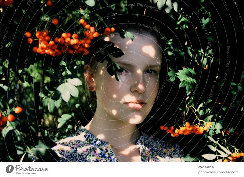 Hidden I Rowan tree Red Berries Branchage Twigs and branches Dangerous Leaf Light Shadow Sunbeam Spacing Protection Hiding place Hide Discover Human being Woman