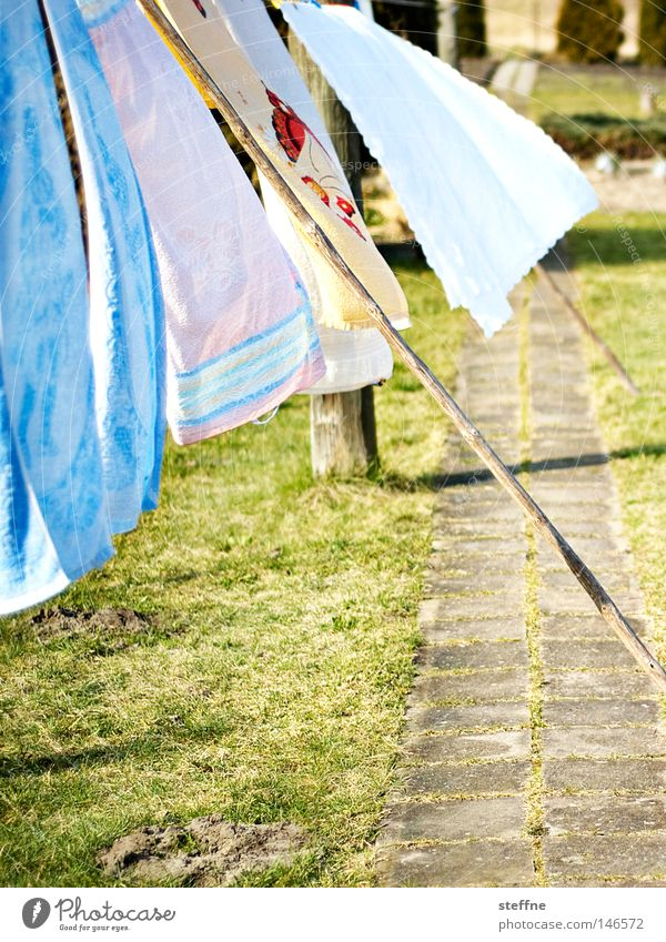 washing day Laundry Washer Hang up Dry Towel Bedclothes Washing Wind Blow Clothesline Clean Pure Detergent Garden Household Washing day Housekeeping