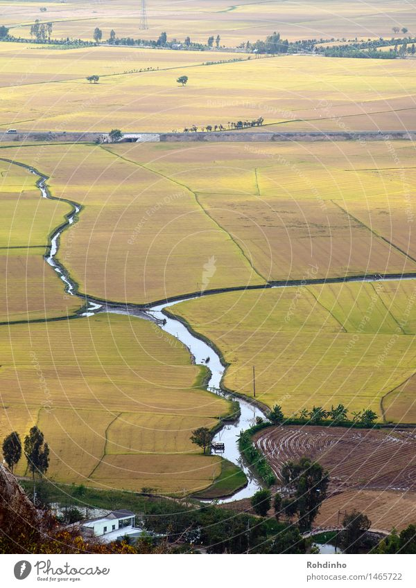Nature Vacation & Travel Water Landscape Far-off places Travel photography Environment Yellow Freedom Tourism Field Earth Esthetic Adventure River Agriculture